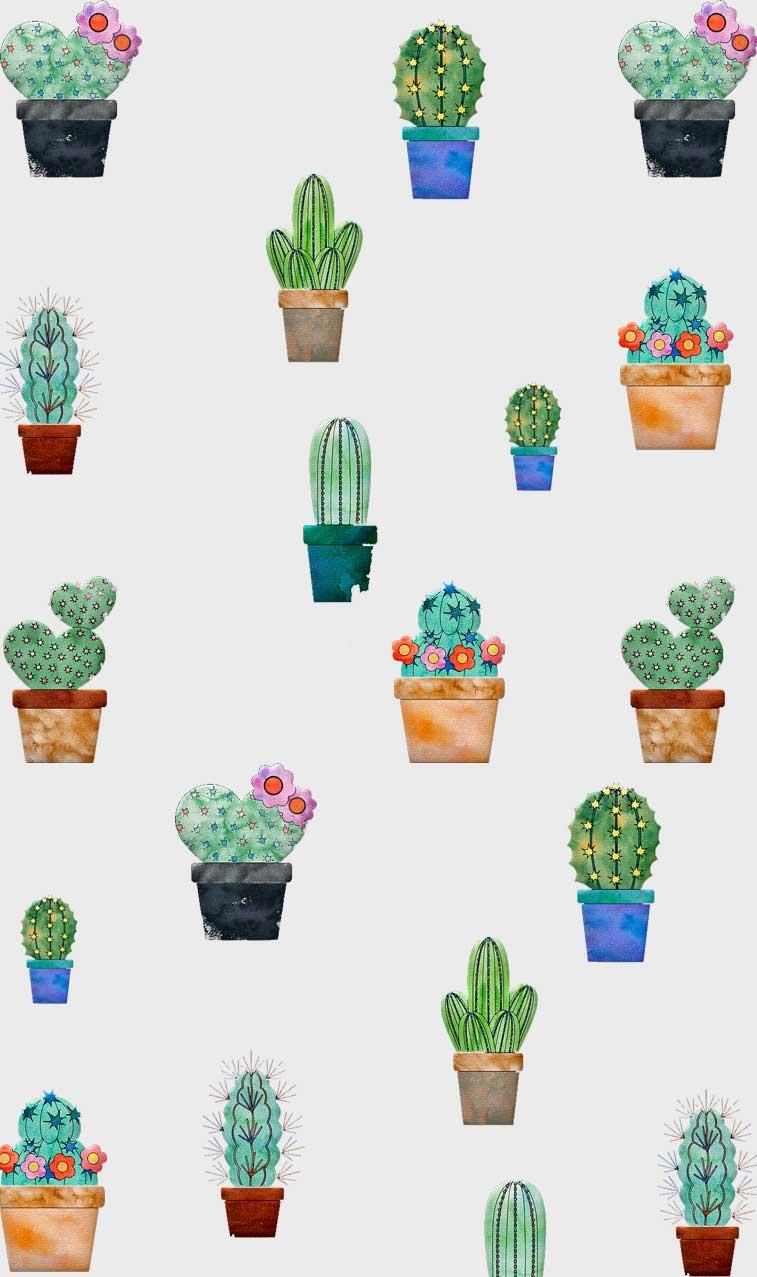 Cactus Background Wallpaper Enjpg