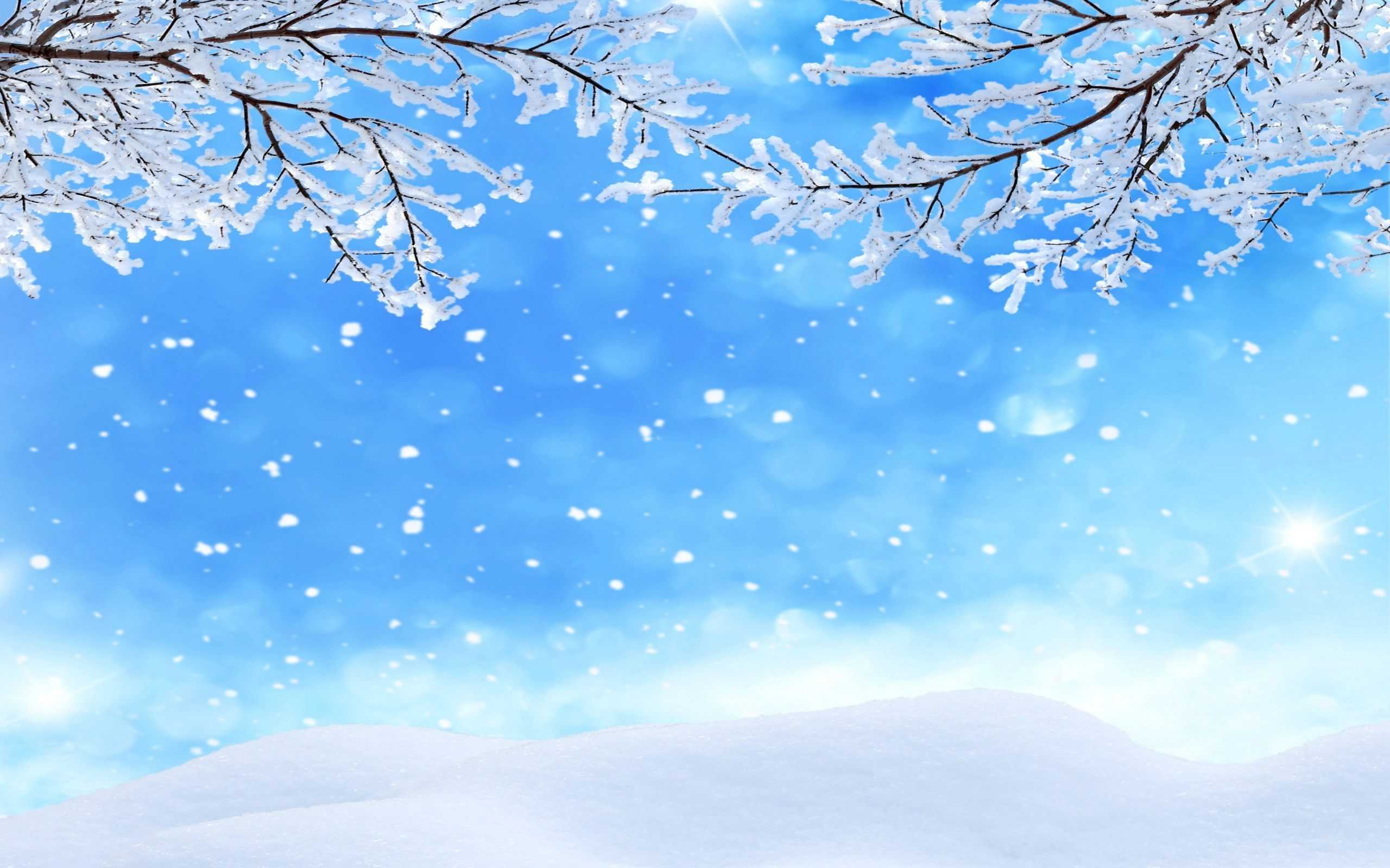Winter Background Wallpaper Enjpg